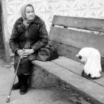 grandma-794308_960_720